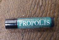 Appalachian Bee Peppermint Lip Balm