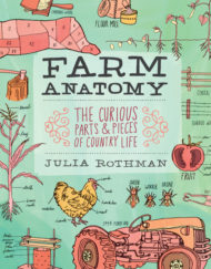 arm anatomy julia rothman