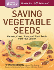 saving vegetable seeds