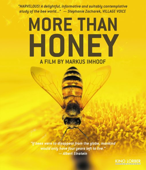 more than honey dvd bee movie