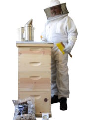beginner beekeeping kit deluxe kit