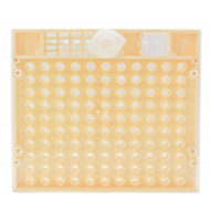 qc105 cupularva grid cell