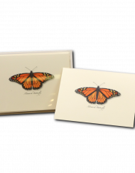 monarch greeting card butterfly notecard